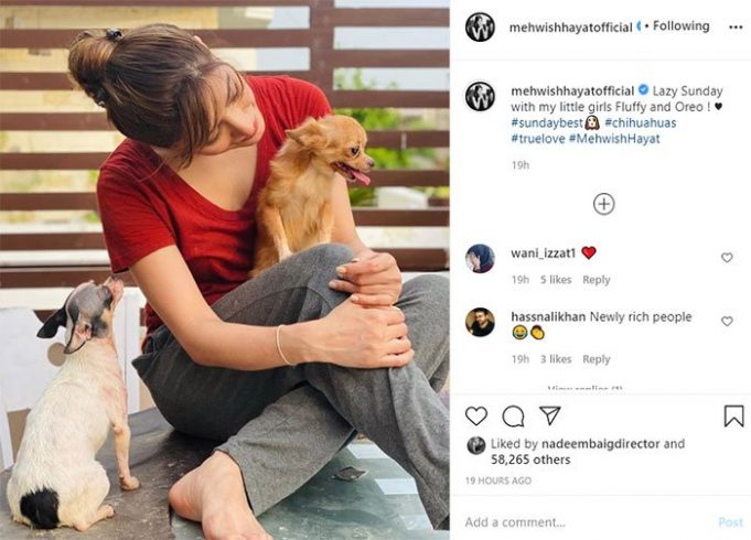 Mehwish Hayat shares adorable photo with her pet dogs Fluffy and Oreo