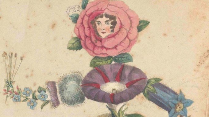 19th Century botanist