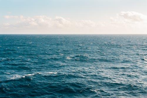 world's biggest seaward