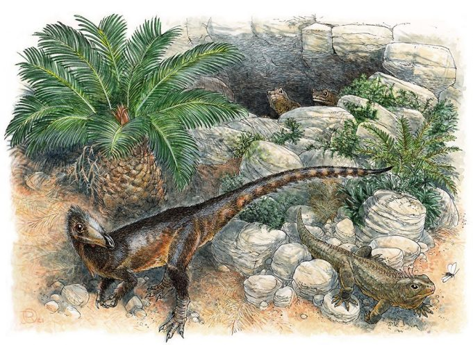 meat-eating dinosaur